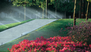 Automatyczne systemy nawadniania ogrodów i trawników, wykładziny kauczukowe