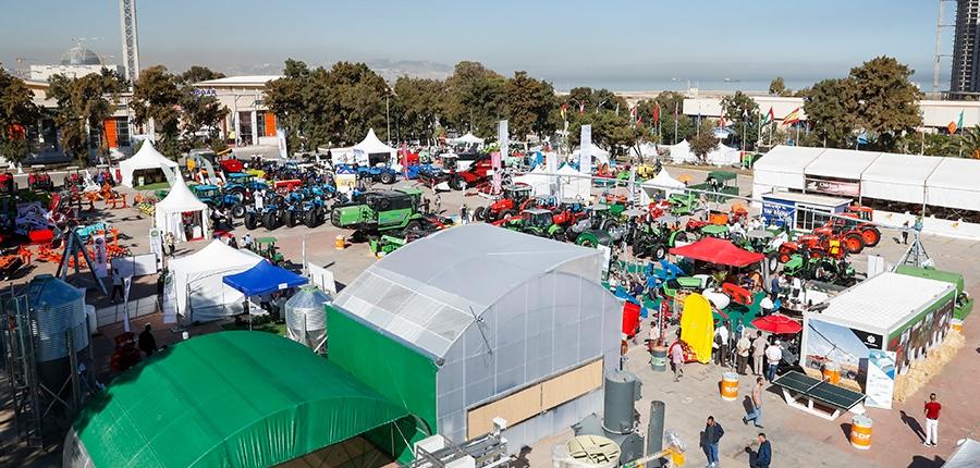 ceny w Algierii na podstawowe produkty i usługi